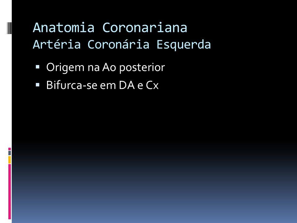 Anatomia Coronariana Artéria Coronária Esquerda