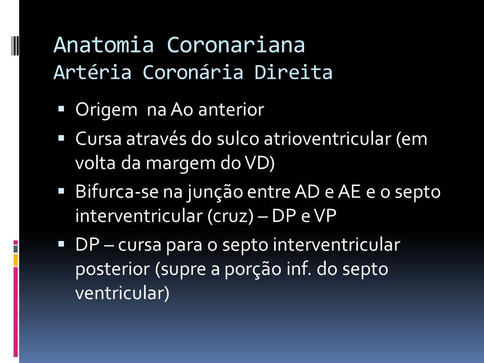 Anatomia Coronariana Artéria Coronária Direita