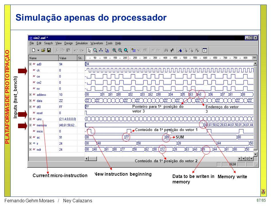 Simulação apenas do processador