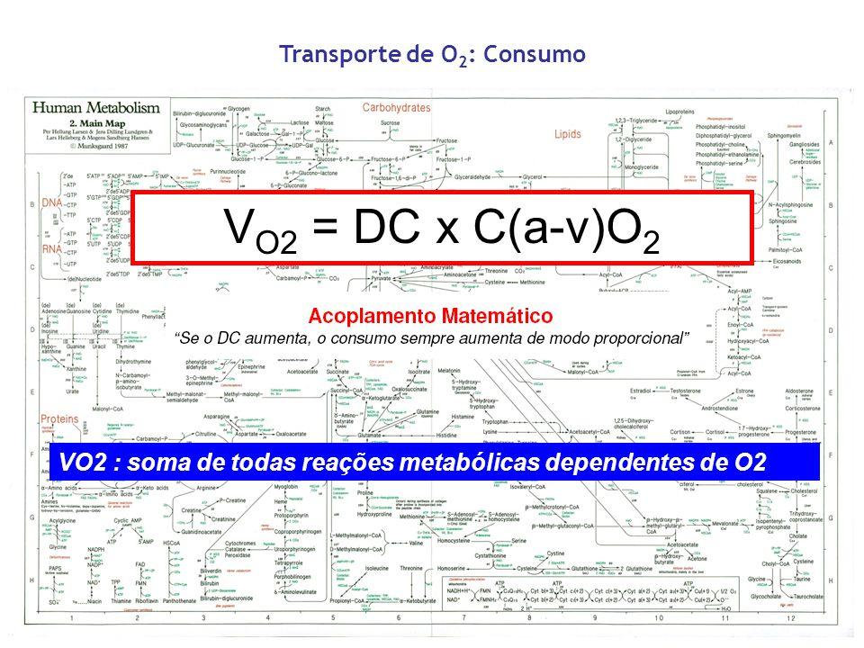 Transporte de O2: Consumo