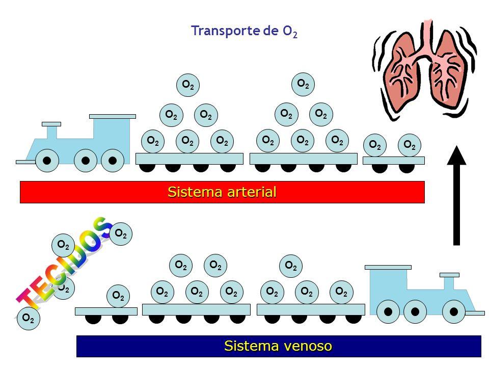 TECIDOS Transporte de O2 Sistema arterial Sistema venoso O2 O2 O2 O2