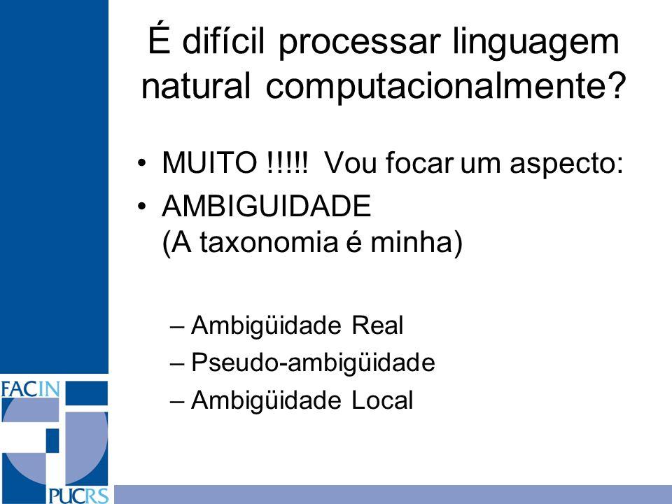 É difícil processar linguagem natural computacionalmente