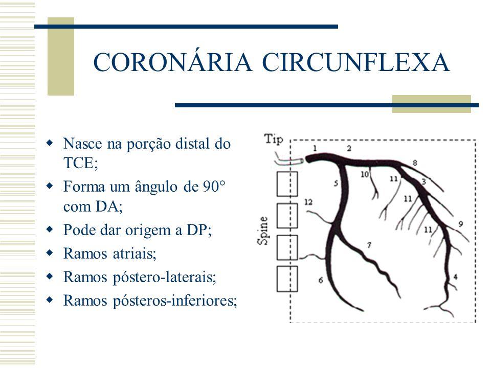 CORONÁRIA CIRCUNFLEXA