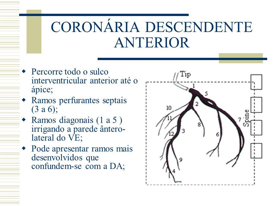 CORONÁRIA DESCENDENTE ANTERIOR