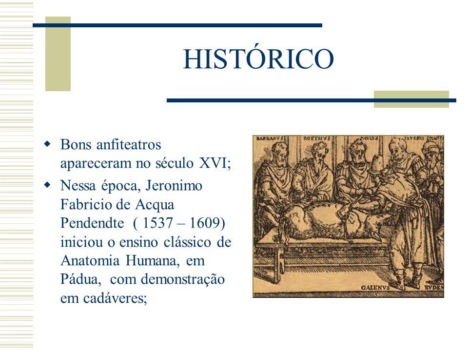 HISTÓRICO Bons anfiteatros apareceram no século XVI;