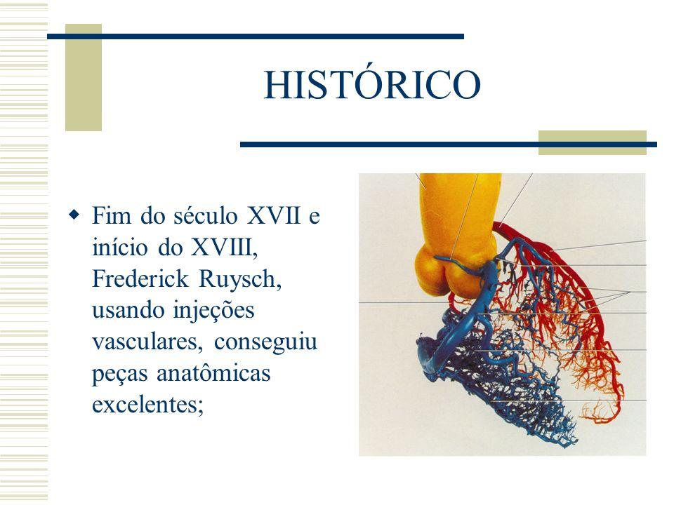 HISTÓRICO Fim do século XVII e início do XVIII, Frederick Ruysch, usando injeções vasculares, conseguiu peças anatômicas excelentes;