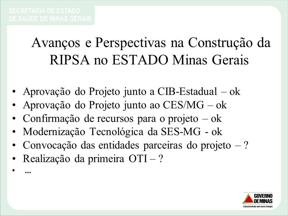 Avanços e Perspectivas na Construção da RIPSA no ESTADO Minas Gerais