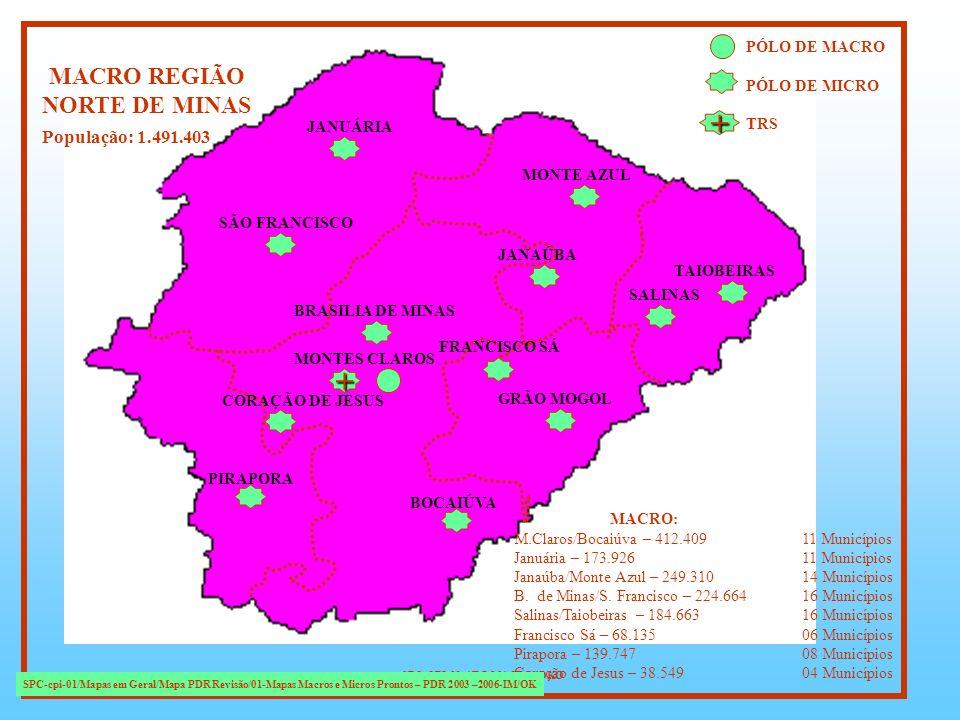 + + MACRO REGIÃO NORTE DE MINAS População: 1.491.403 PÓLO DE MACRO