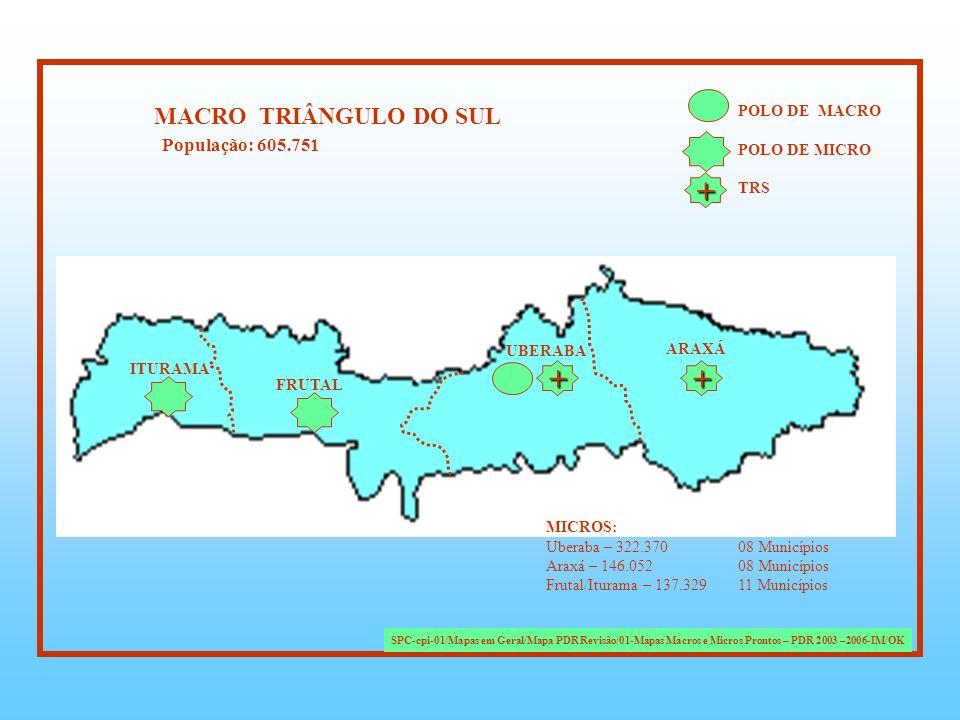 + + + MACRO TRIÂNGULO DO SUL População: 605.751 POLO DE MACRO