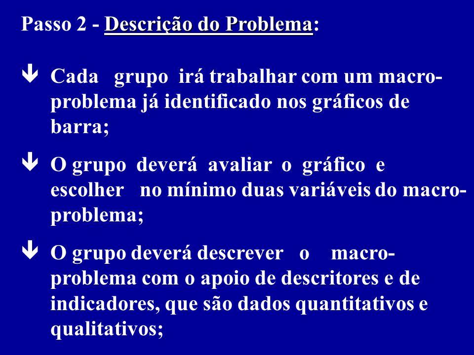 Passo 2 - Descrição do Problema: