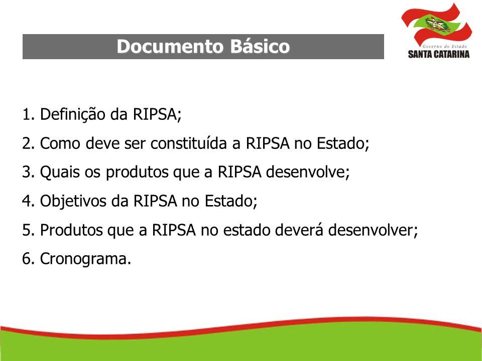 Documento Básico Definição da RIPSA;