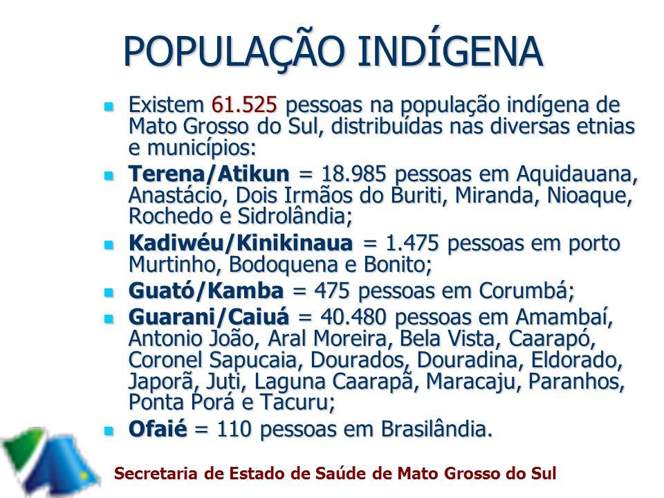 POPULAÇÃO INDÍGENA Existem 61.525 pessoas na população indígena de Mato Grosso do Sul, distribuídas nas diversas etnias e municípios: