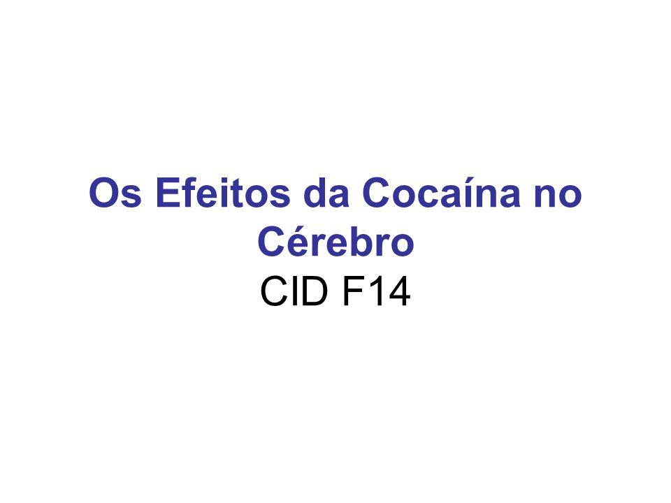 Os Efeitos da Cocaína no Cérebro CID F14