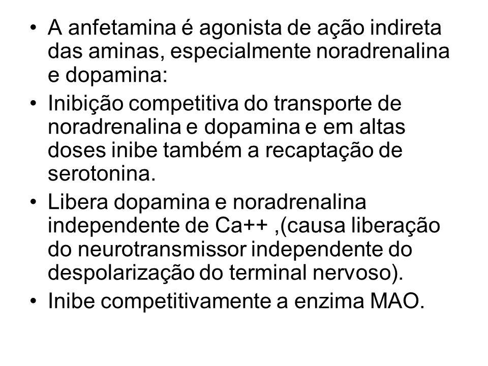 A anfetamina é agonista de ação indireta das aminas, especialmente noradrenalina e dopamina: