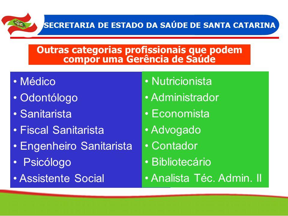 Outras categorias profissionais que podem compor uma Gerência de Saúde