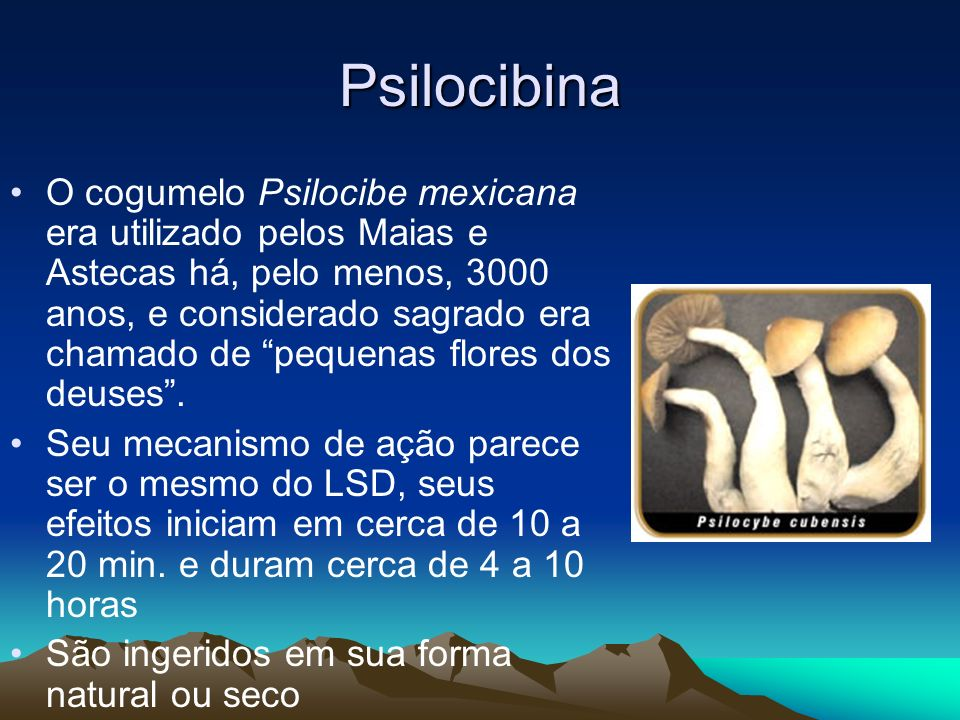 Psilocibina