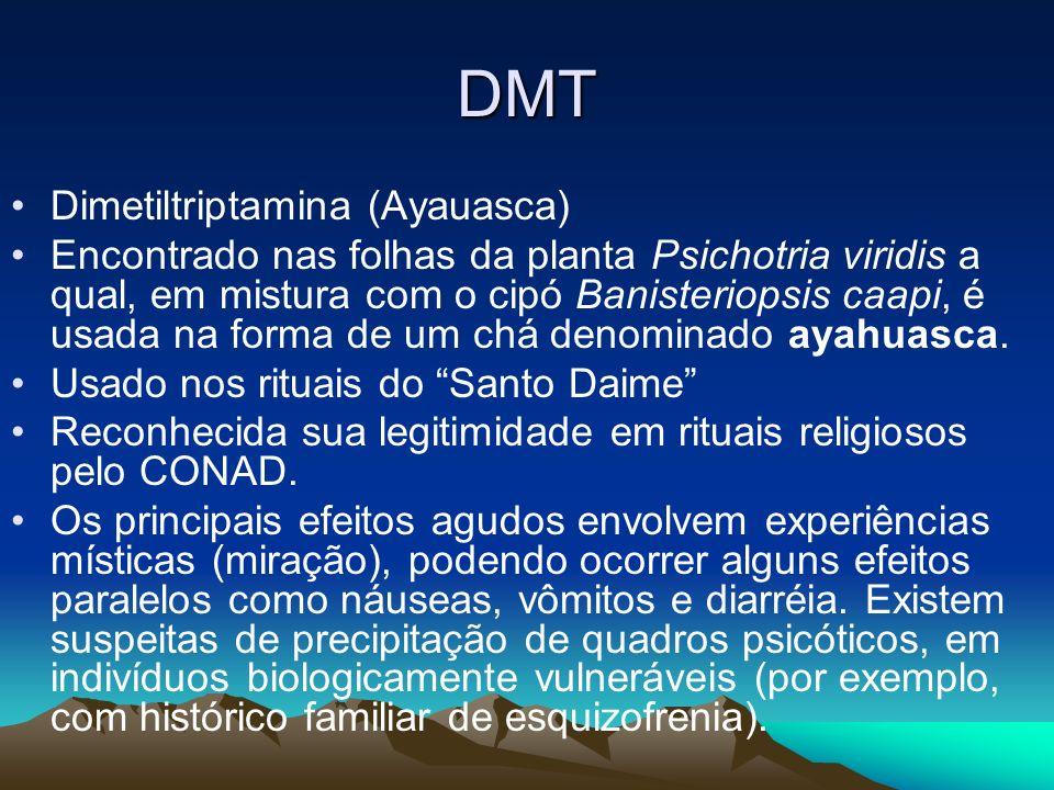DMT Dimetiltriptamina (Ayauasca)