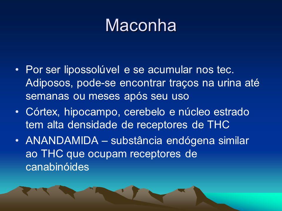 MaconhaPor ser lipossolúvel e se acumular nos tec. Adiposos, pode-se encontrar traços na urina até semanas ou meses após seu uso.