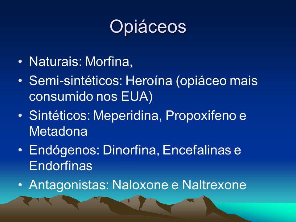 Opiáceos Naturais: Morfina,