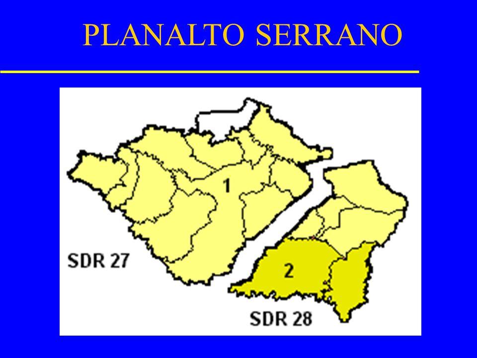PLANALTO SERRANO