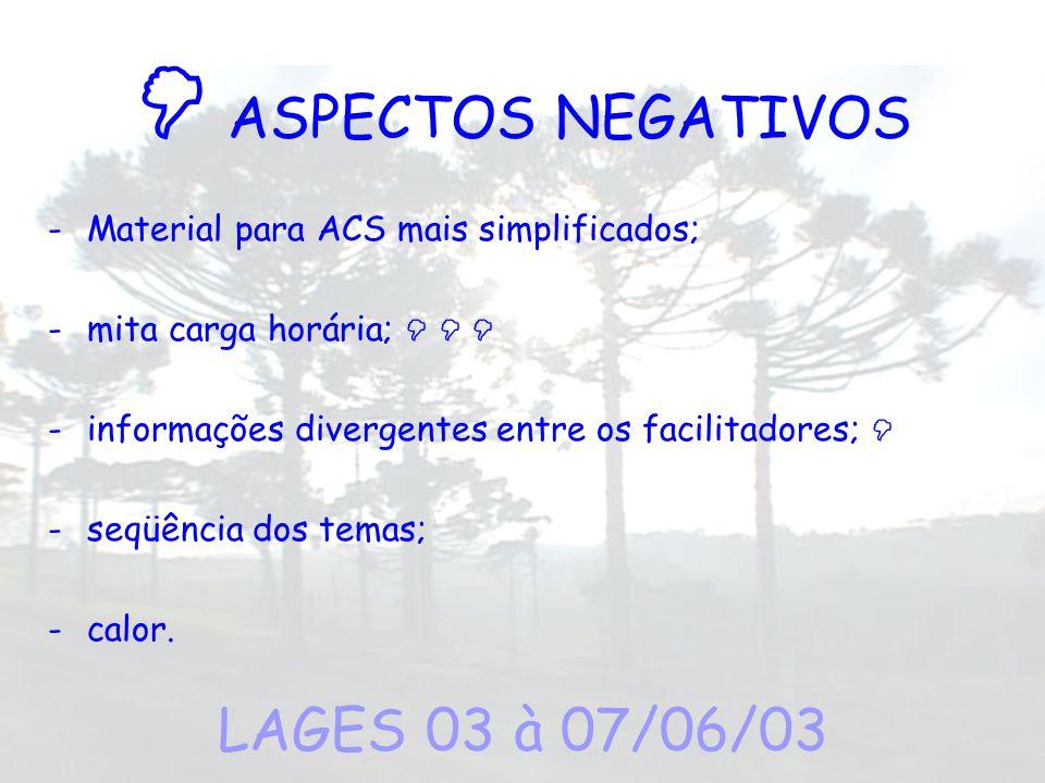  ASPECTOS NEGATIVOS LAGES 03 à 07/06/03