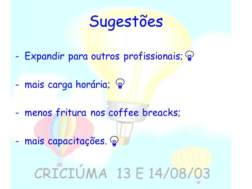 Sugestões CRICIÚMA 13 E 14/08/03 Expandir para outros profissionais;