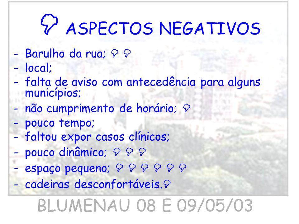  ASPECTOS NEGATIVOS BLUMENAU 08 E 09/05/03 Barulho da rua;   local;