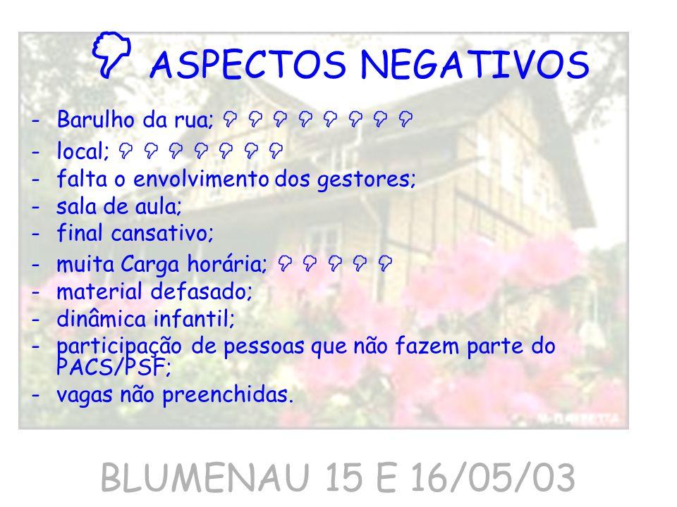  ASPECTOS NEGATIVOS BLUMENAU 15 E 16/05/03
