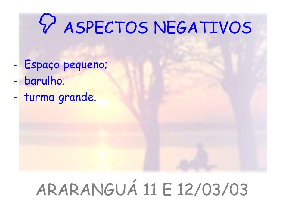  ASPECTOS NEGATIVOS ARARANGUÁ 11 E 12/03/03 Espaço pequeno; barulho;