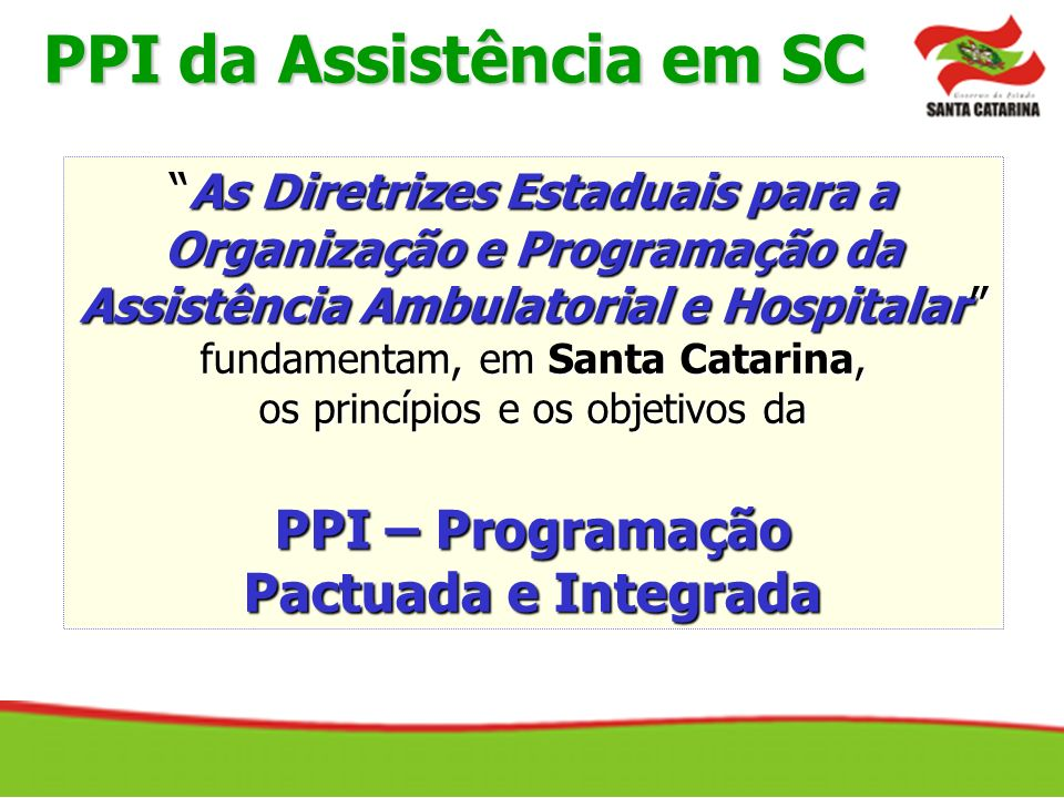 PPI da Assistência em SC Organização e Programação da