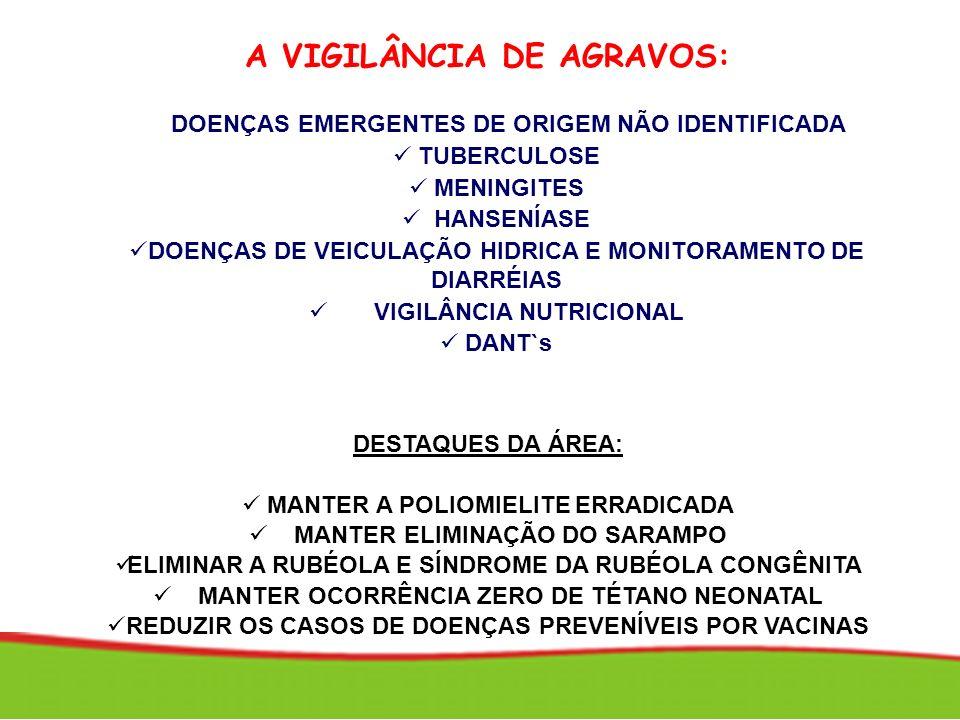 A VIGILÂNCIA DE AGRAVOS: