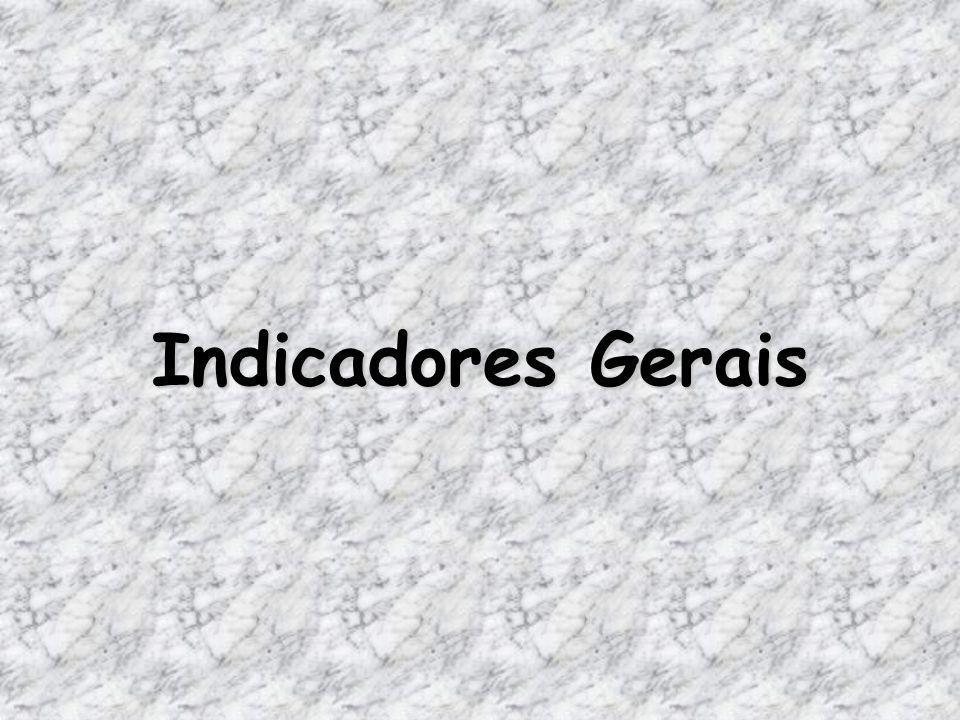 Indicadores Gerais