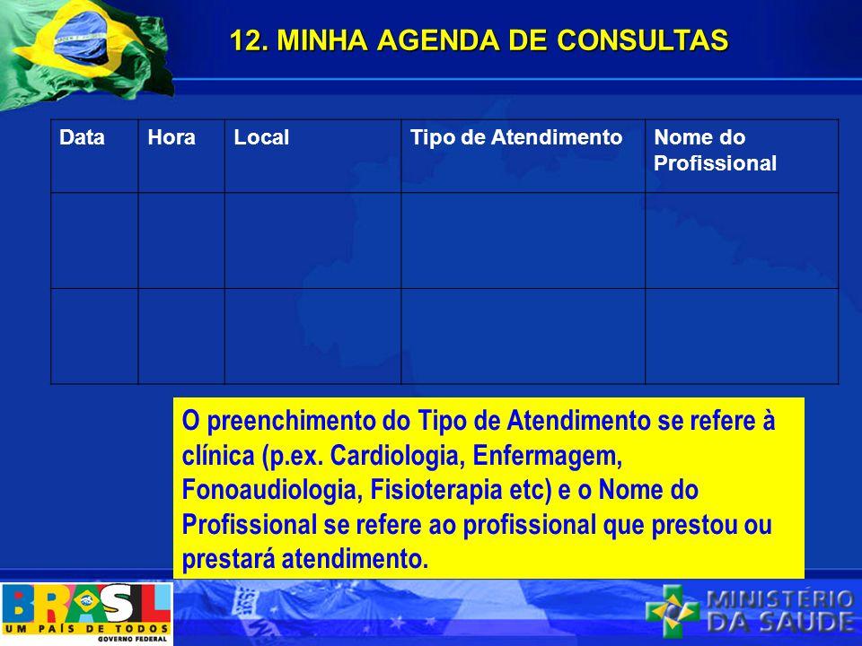 12. MINHA AGENDA DE CONSULTAS