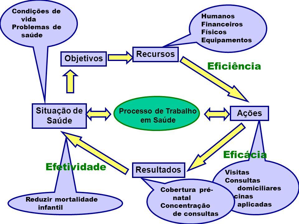 Eficiência Eficácia Efetividade Recursos Objetivos Situação de Ações