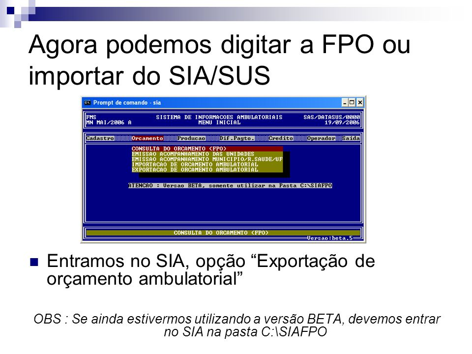 Agora podemos digitar a FPO ou importar do SIA/SUS