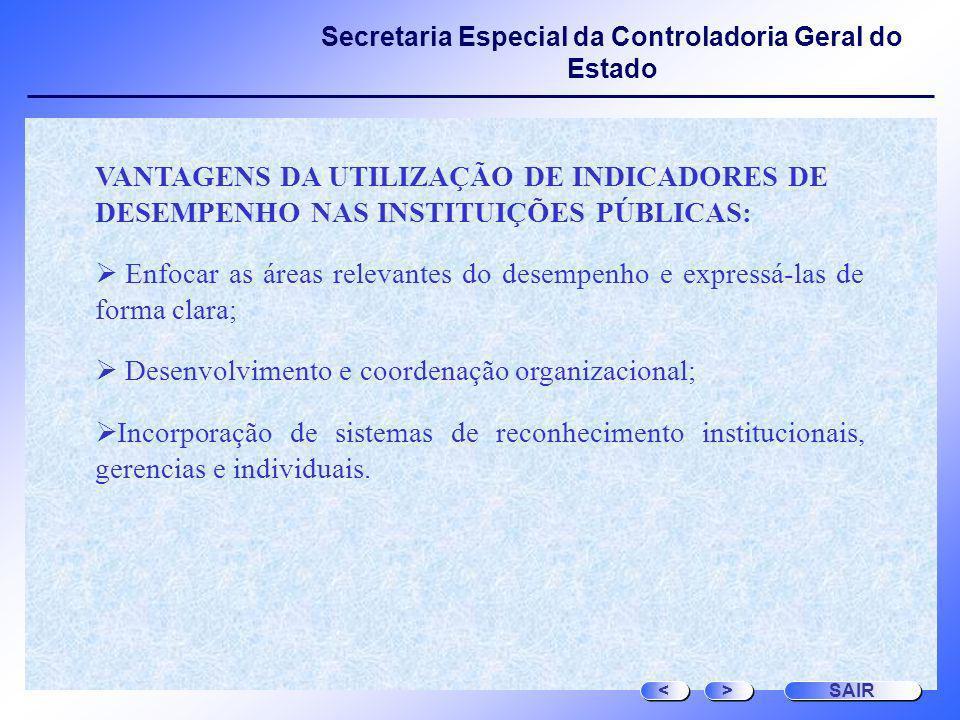 Desenvolvimento e coordenação organizacional;