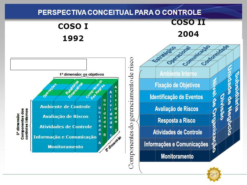 PERSPECTIVA CONCEITUAL PARA O CONTROLE
