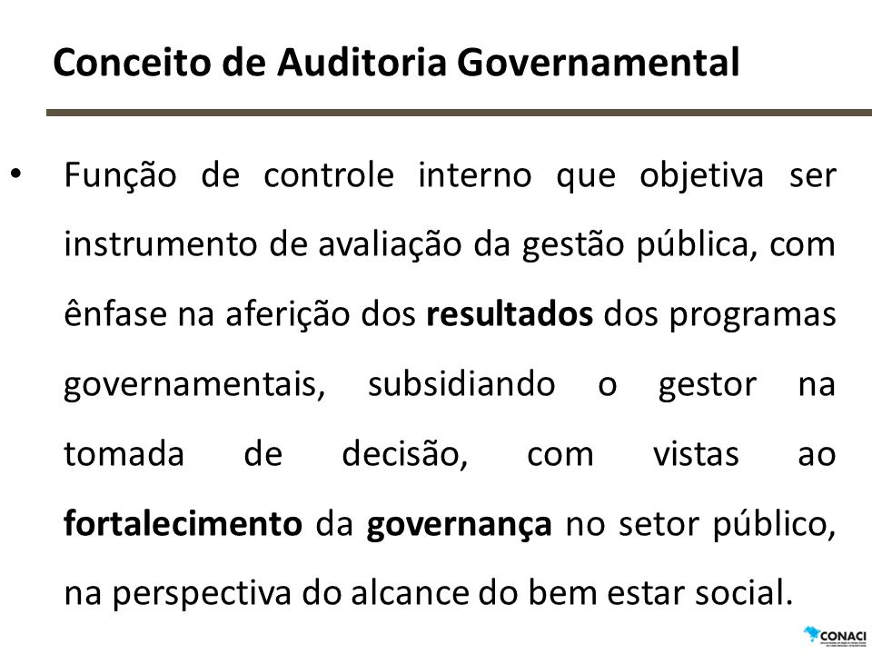 Conceito de Auditoria Governamental
