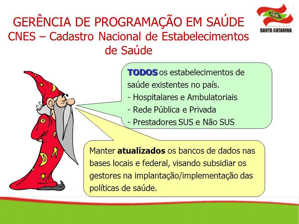 GERÊNCIA DE PROGRAMAÇÃO EM SAÚDE CNES – Cadastro Nacional de Estabelecimentos de Saúde