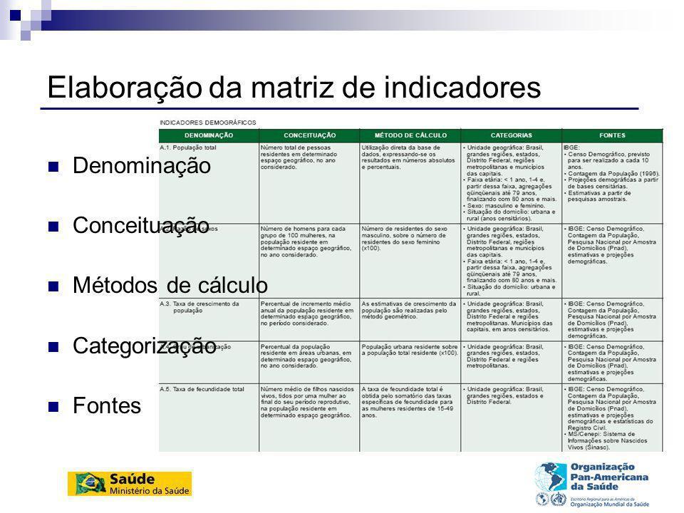 Elaboração da matriz de indicadores