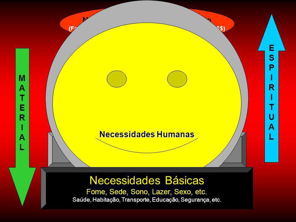 Necessidade de Aceitação Social