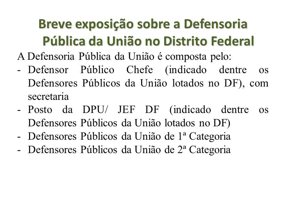 Breve exposição sobre a Defensoria Pública da União no Distrito Federal