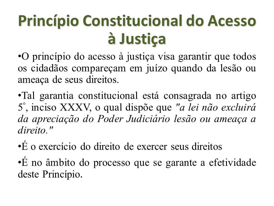 Princípio Constitucional do Acesso à Justiça