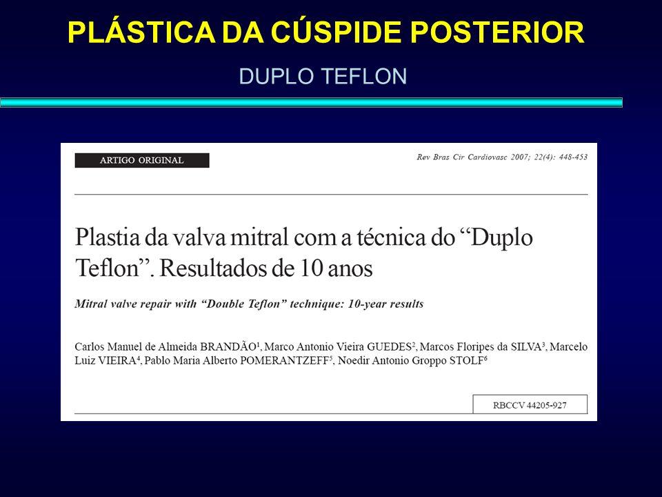 PLÁSTICA DA CÚSPIDE POSTERIOR