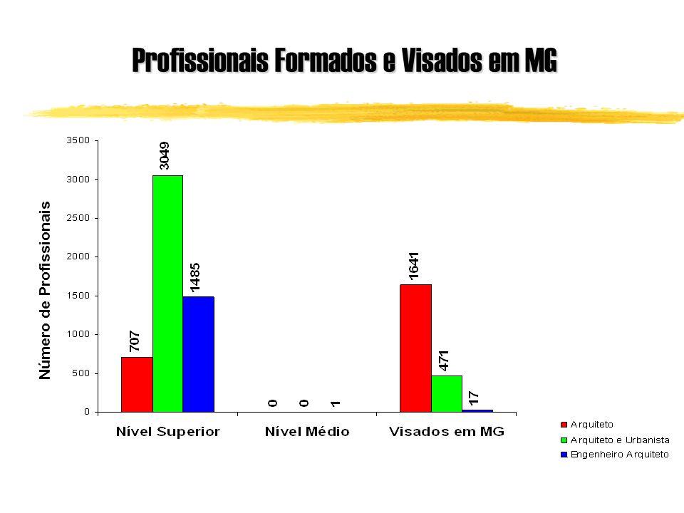 Profissionais Formados e Visados em MG