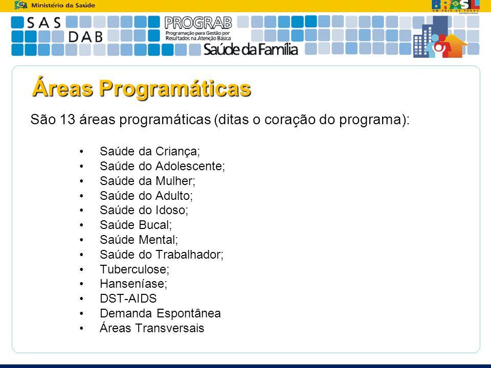 Áreas Programáticas São 13 áreas programáticas (ditas o coração do programa): Saúde da Criança; Saúde do Adolescente;