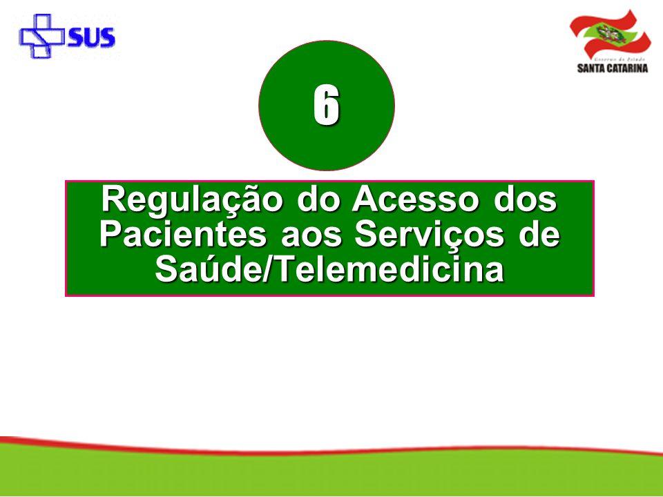 Regulação do Acesso dos Pacientes aos Serviços de Saúde/Telemedicina