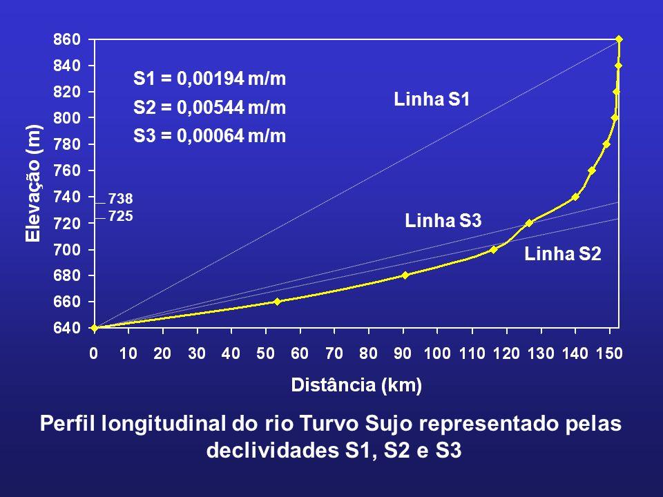 Perfil longitudinal do rio Turvo Sujo representado pelas