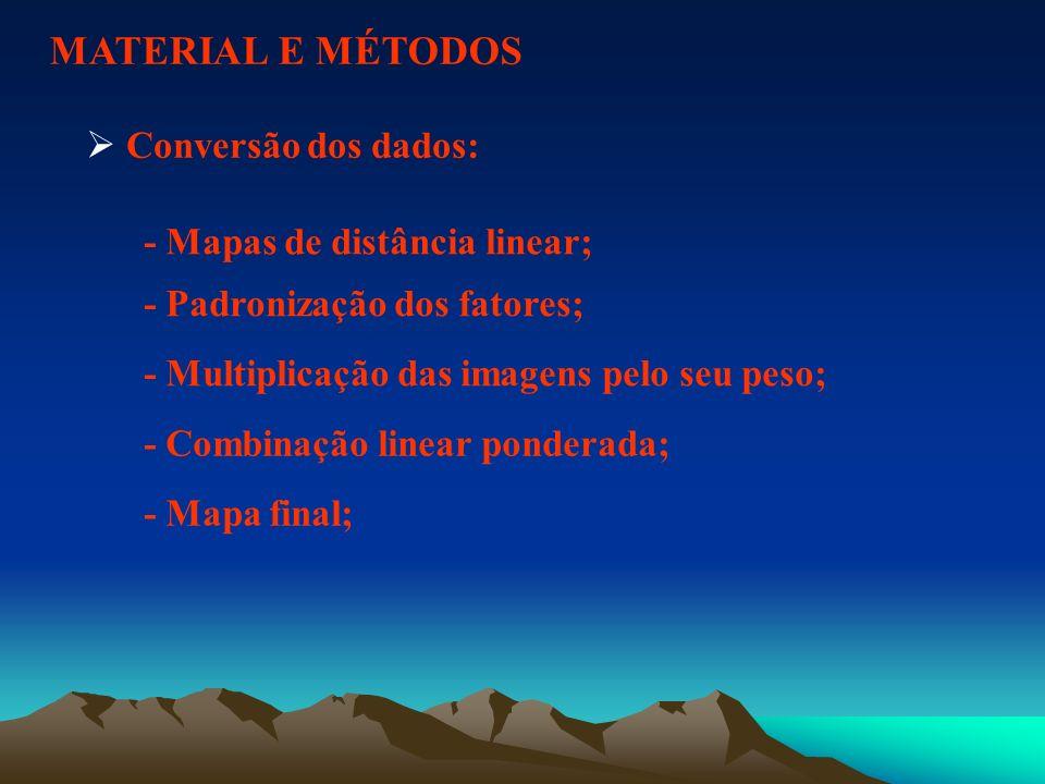 MATERIAL E MÉTODOS Conversão dos dados: - Mapas de distância linear;