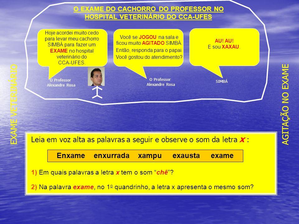 EXAME VETERINÁRIO AGITAÇÃO NO EXAME